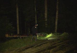 UPDATE 2 Intervenție pentru salvarea a trei motocliciști rătăciți într-o pădure