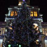 S-au aprins luminiţele din bradul de Crăciun din fața Palatului Administrativ