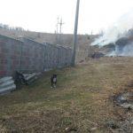 Un incendiu de vegetație a pus în pericol mai multe case din Sebiș