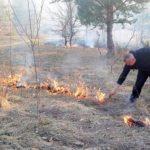 Incendiu de vegetaţie în apropierea localităţii Nadăş