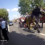 Nuntă cu trăsuri în centrul Aradului. Nuntașii au fost opriți de polițiștii locali