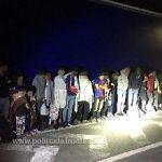 25 de migranți, descoperiți ascunşi într-un automarfar la PTF Nădlac II