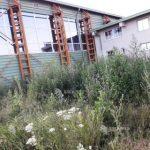 Sală de sport construită cu 3,5 milioane lei, abandonată în buruieni
