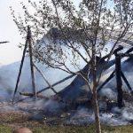 Incendiu la un adăpost improvizat. Mai multe animale au murit
