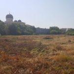 """Primăria Arad se opune construirii unui complex rezidențial pe terenul unde a funcționat """"Tricoul Roșu"""""""