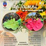 Festivalul Simfonia Florilor de Toamnă, ediția a II-a, la Arad. PROGRAM
