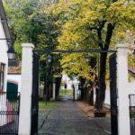 """Strada cu intrarea principală în Domeniul Regal Săvârşin, denumită """"Regina-Mamă Elena"""""""
