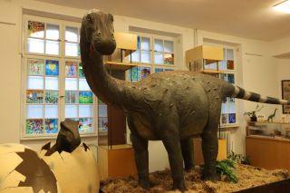 """Expoziția """"O lume dispărută la Muzeu. Dinozaurii"""", prelungită"""