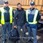 Migrant marocan, găsit ascuns pe platforma unui tren, la PTF Curtici