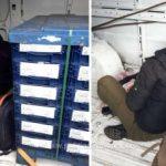 11 cetăţeni din Irak, Eritreea şi Iran, găsiți ascunşi într-o autoutilitară la PTF Nădlac II