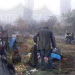 Beneficiari ai ajutorului social, scoși la acțiuni de salubrizare în Arad