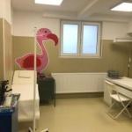 Ambulatoriul de la Infecţioase – Copii intră în circuitul medical