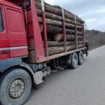 Material lemnos, exploatat ilegal, recuperat de jandarmii arădeni