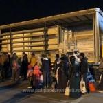 33 de migranți ascunşi într-un automarfar, depistați la PTF Nădlac II