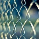 Cum să faci cea mai bună alegere de material pentru gardul curții tale?