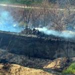 Zeci de hectare de păşune împădurită au ars într-un incendiu