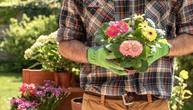 Comandă online unelte de grădinărit cu ridicare din magazin în Arad! Ce NU trebuie să îți lipsească