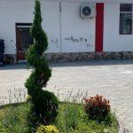 Injurii mâzgălite pe pereţii căminului cultural din Neudorf, recent renovat