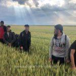 Zece migranți din Afganistan, depistaţi de polițiștii de frontieră de la Nădlac