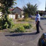 Acțiuni ale polițiștilor locali în municipiul Arad