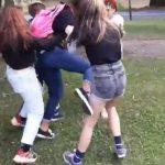 Bătaie între adolescente, într-un parc din Arad. Trei erau sub influența alcoolului