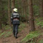 UPDATE. Doi bărbați s-au rătăcit într-o pădure din județul Arad. Un bărbat rănit a fost preluat de medici