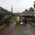 UPDATE 2 O furtună a provocat pagube în Arad. Pompierii au intervenit în mai multe zone