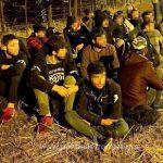 21 de migranți din Turcia, Irak şi Siria, depistaţi la graniţa cu Ungaria
