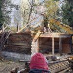 Cabană construită fără autorizație pe Insula Mureș, demolată de autorități