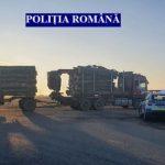 Transport ilegal de material lemnos, depistat de polițiști