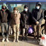 Migranți găsiți ascunşi într-un TIR care transporta bere, la PTF Nădlac I