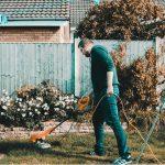 Cum să ai grijă de grădina ta – lucruri de care ai nevoie pentru a-ți crea un loc de vis