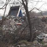 Moloz aruncat într-o pădure din Vladimirescu. Transportul, surprins de polițiștii locali