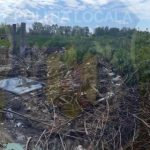 Amenzi pentru persoanele care nu își curăță terenurile, la Arad