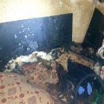 Incendiu într-un apartament din Arad. Femeie de 85 de ani, găsită moartă