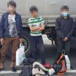 Migranți din Siria, Pakistan şi Afganistan, depistați la Vărșand și Nădlac II