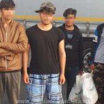 Migranți din Afganistan, Algeria și Maroc,depistați de polițiștii de frontieră arădeni
