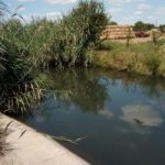 Primăria Arad anunță că a început decolmatarea canalului din Bujac
