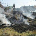 Amendați cu 6.000 de lei pentru că au aruncat gunoaie pe domeniul public al municipiului Arad